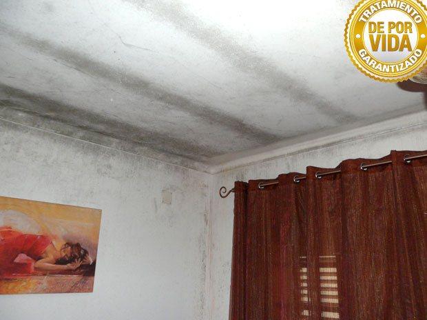 Prohucon tratamiento soluci n y eliminaci n definitiva de humedad en las paredes sus causas Humedades en las paredes