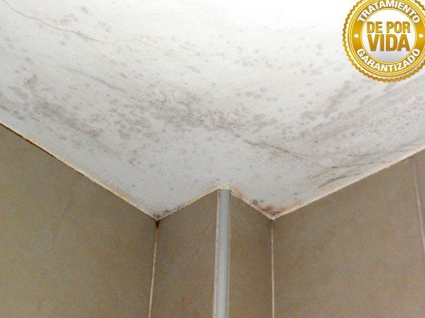 Prohucon tratamiento y eliminaci n definitiva de humedad - Eliminar humedad por condensacion ...